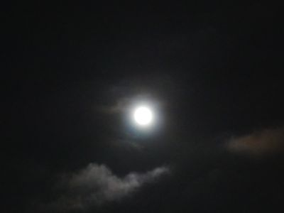 Super moon by Roni